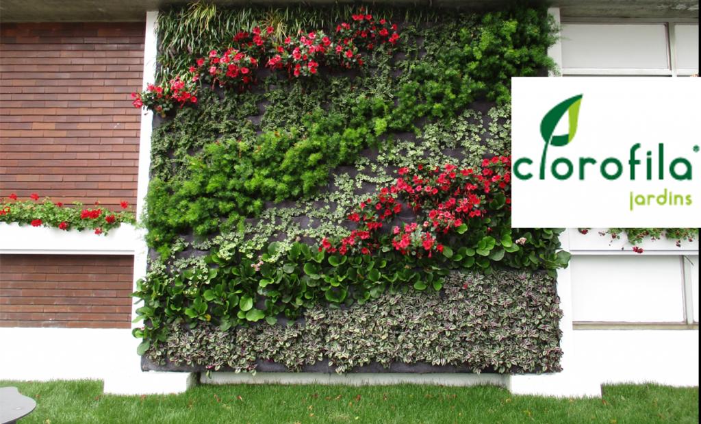 CLOROFILA | GREEN SOLUTIONS